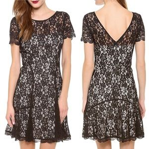 DVF Maribel Lace Dress 14 NWT